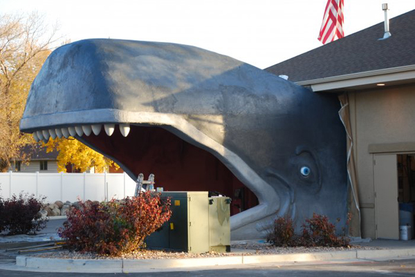 Whale Car Wash Structure