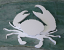 Free crab pattern for download Hot wire foam factory